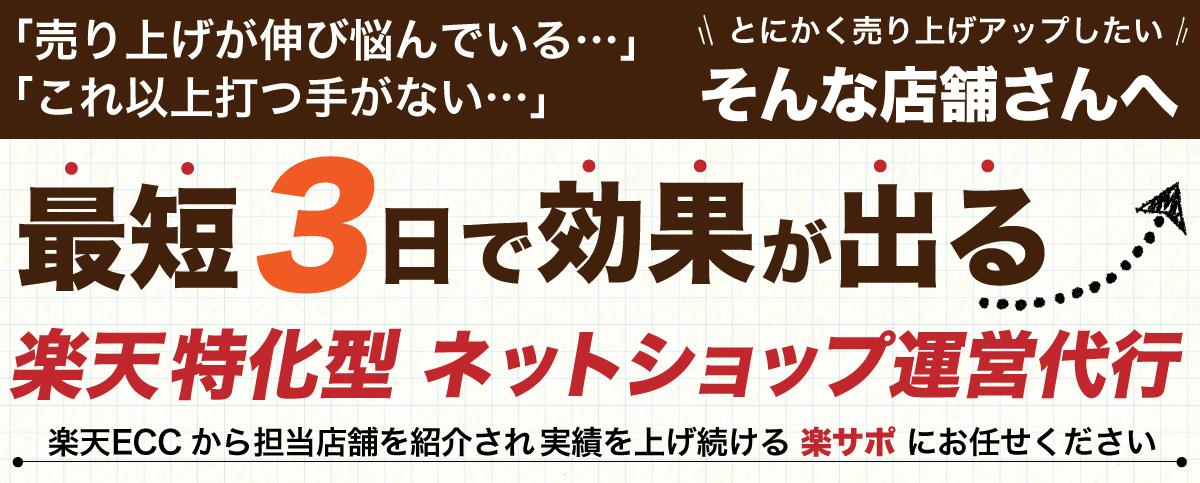 月商1,000万円突破をサポートする楽天ネットショップの専門家【楽サポ】